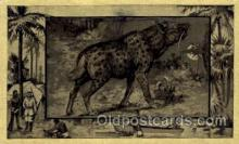 zoo001030 - Hyena Central Africa Postcard Post Cards Old Vintage Antique