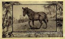 zoo001033 - The Gnu, Antelope Southern Africa Postcard Post Cards Old Vintage Antique