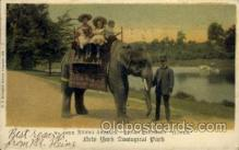zoo001062 - Riding Animals, Indian Elephant, New York Zoological Park New York, USA Postcard Post Cards Old Vintage Antique